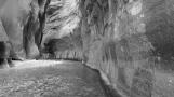 Road-trip-national-parks-USA-Utah-Zion-narrows-hike-summer-2013