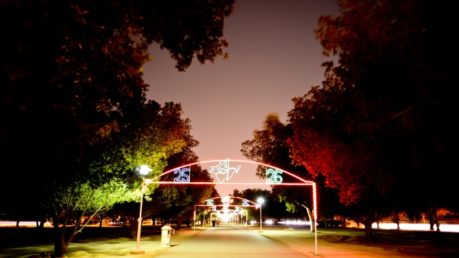 night-photography-Kuwait-Mishrif-walkway-2013