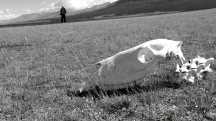 Mongolia-Altai-peaks-lake-Khoton-skull-thegeneralist