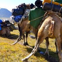 Mongolia-altai-peaks-tavan-bogd-national-park-camels-sherpas-thegeneralist