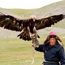 Mongolia-falcon-golden-eagle-ulgi-thegeneralist