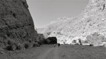 Oman-Jabel-Shams-the-generalist-2